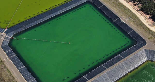 Banned evaporation ponds are the cheapest option of dealing with coal seam gas waste